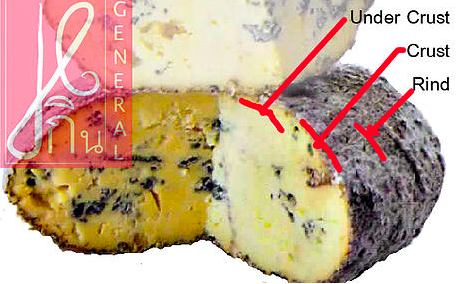 Cheese Structure