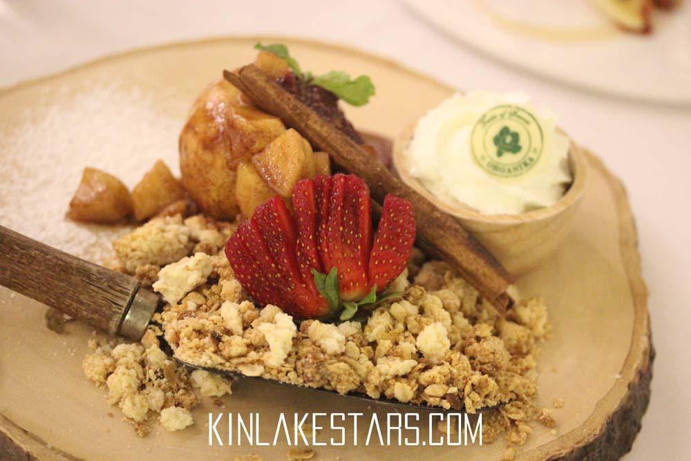 img_8383organika_dinner_review_